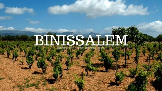 Vivir en Binissalem Mallorca