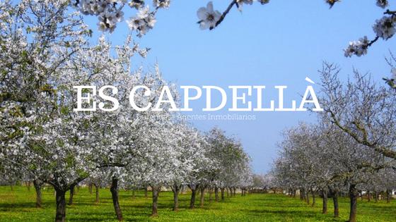 Vivir en Es Capdellà Mallorca