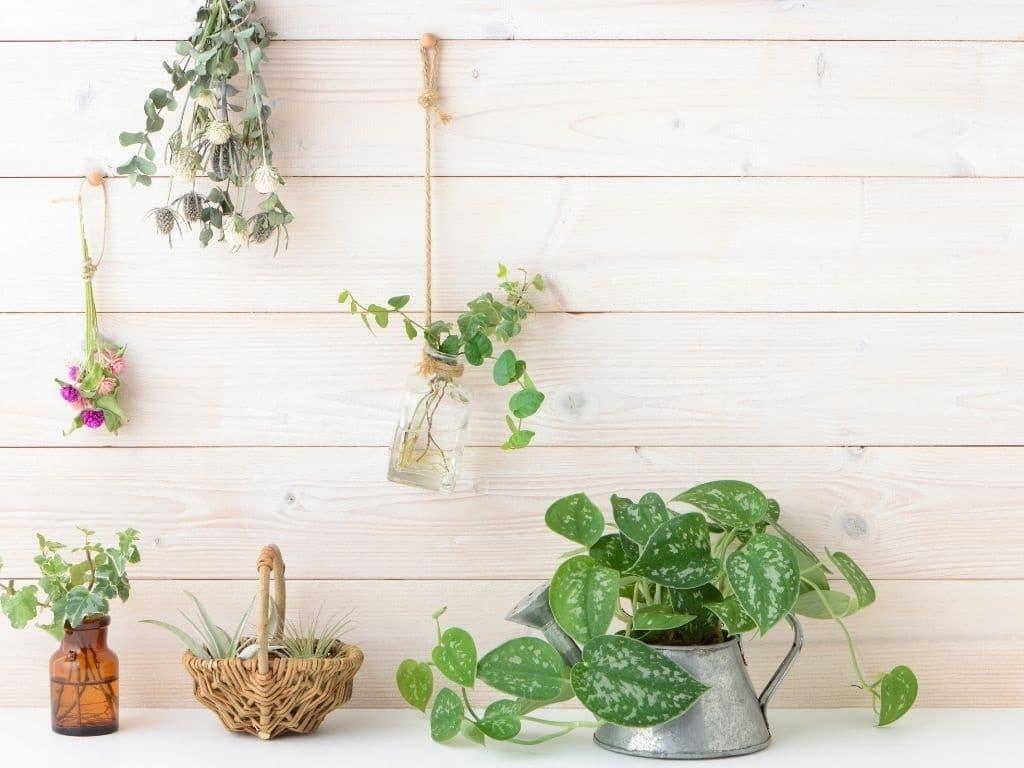 decoración sostenible- materiales y tips